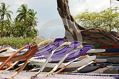 Hawaiian canoes