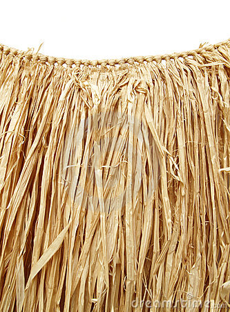 Free Hawaiian Luau - Grass Hula Skirt Royalty Free Stock Photography - 1172627