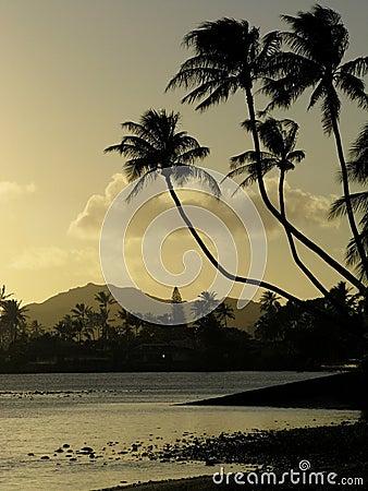 Free Hawaiian Sunset Royalty Free Stock Photos - 932128