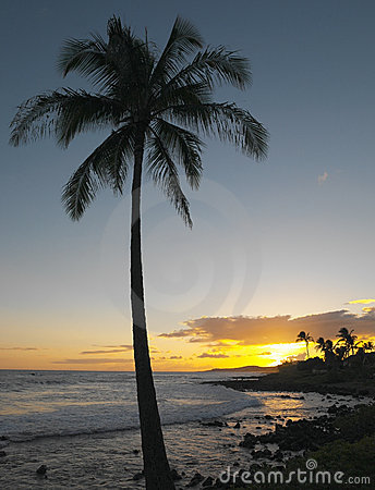Hawaiian Sunset - Kauai