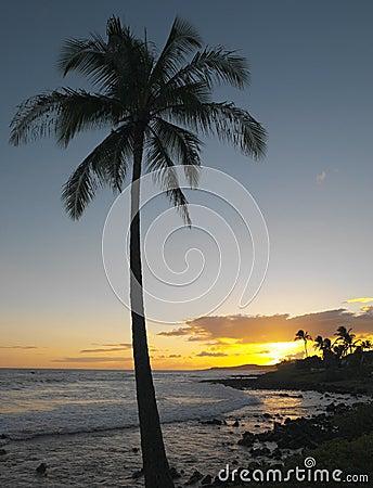 Hawaiian Sunset - Kauai