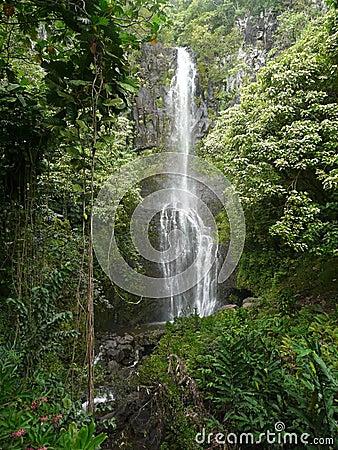 Hawaiian tropical waterfall
