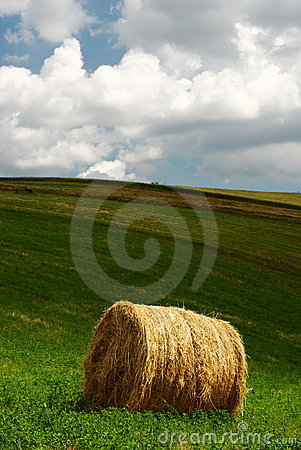 Free Hay Bale Stock Image - 9406791
