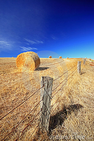 Hay bale with fence