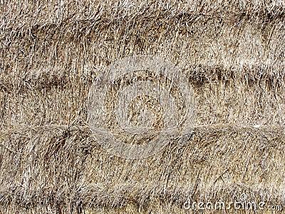 Hay bale texture