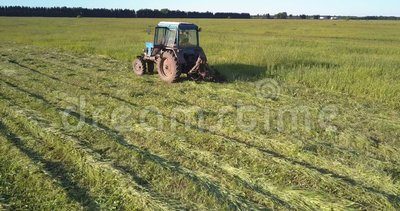 Hay balers intersect on vast field mowing grown grass