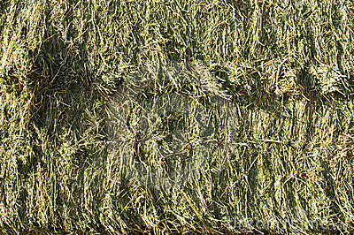Hay Bales Stock Photography - Image: 14814582