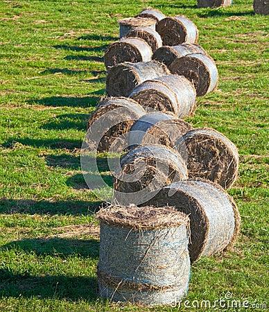 Free Hay Bales Royalty Free Stock Photography - 17695667