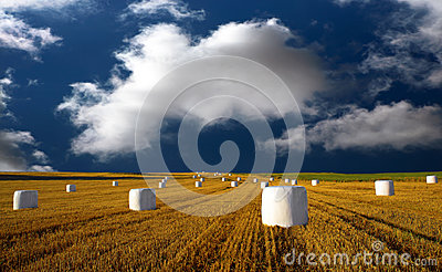Hay bales on blue sky