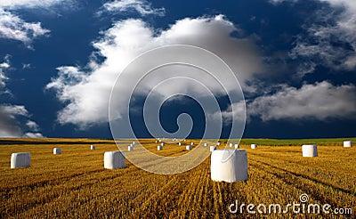 Hay bales on blue sky