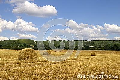 Hay Bales & Chiltern Hills