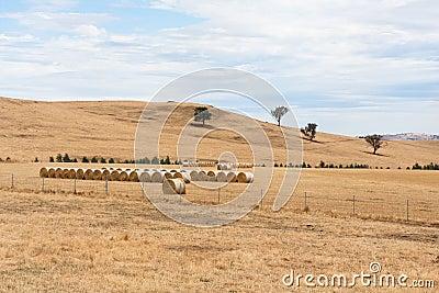 Hay bales on dry Australian farm landscape