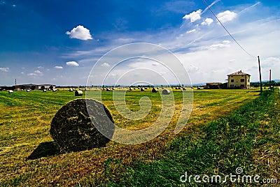 Hay bales in Italian field