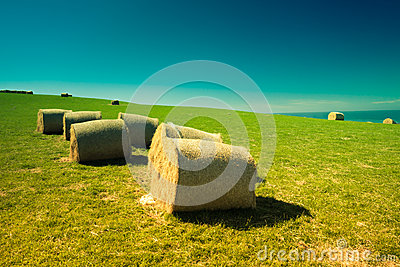 Hay bales in New Zealand