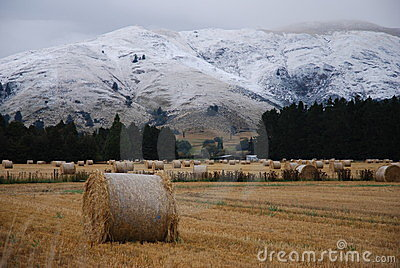 Hay Bales and snowbound Mountains
