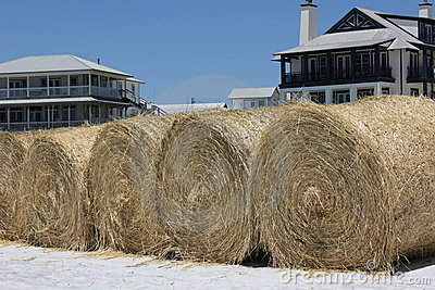 Hay bales on white sand beach for oil cleanup Editorial Photography