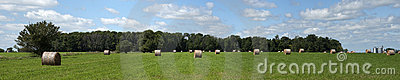 Hay Field Bales Farm Land Panorama, Banner