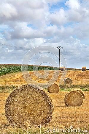Hay harvest roll