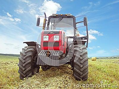 Hay harvesting in the field