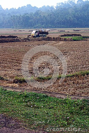 Hay Loaded Truck in the middle of agriculture farm