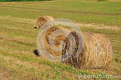Hay rolls in Tuscany , Italy