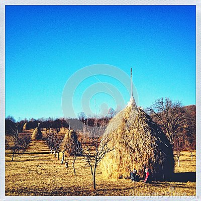 Hay stack in countryside