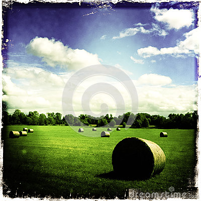 Hay stacks in green field