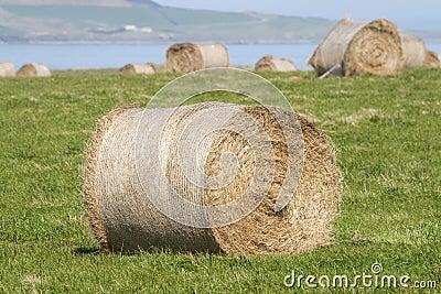 Hay stacks near ocean