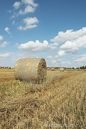 Free Haycock. End Of Summer Stock Photo - 6145530