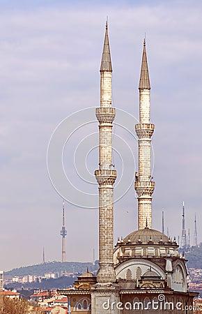 Haydarpasa Protokol Cami Mosque 01