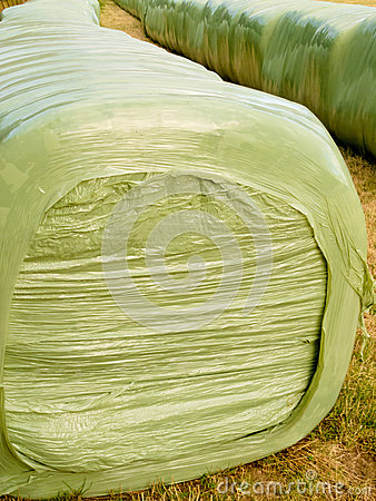 Free Haylage Bales Left Outdoors For Fermentation Stock Photography - 25452452