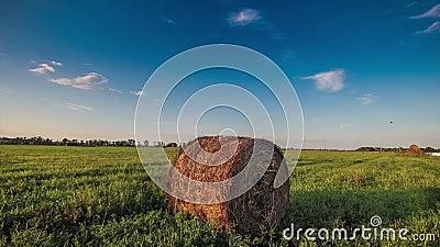 haystack stock footage