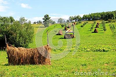 Haystack-agriculture