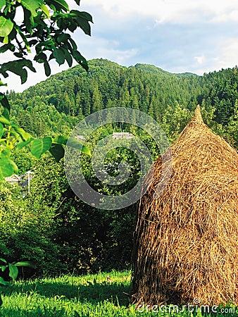 Haystack on a farm