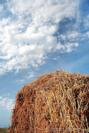 Free Haystack On A Background Of Blue Sky Stock Photos - 9079493