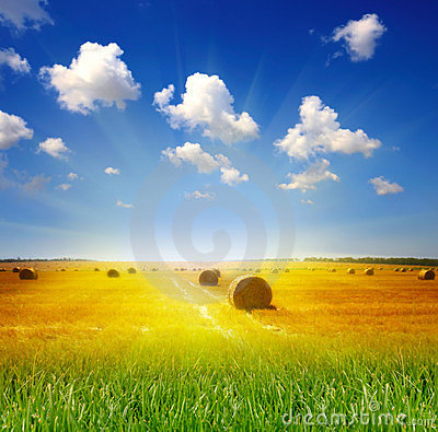 Free Haystack On The Meadow Royalty Free Stock Photos - 23580848