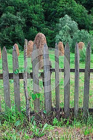 Haystacks behind a wooden fence