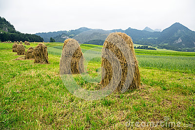 Haystacks on the field in Zakopane
