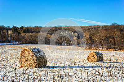 Haystacks on the Frozen Field