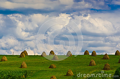 Haystacks on a green field and blue sky with cloud
