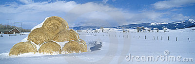 Haystacks and Snow