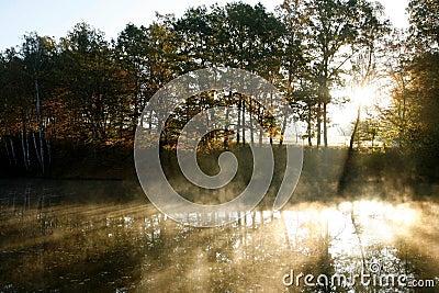 Haze above a pond