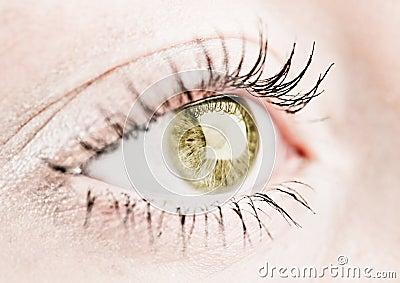 Hazel human eye.