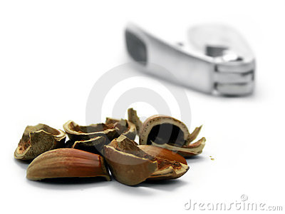 Hazel nut shells and cracker