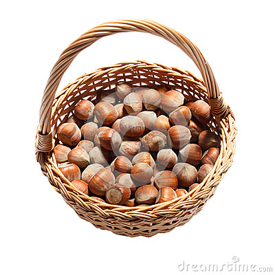 Free Hazel Nuts Royalty Free Stock Photography - 36531647