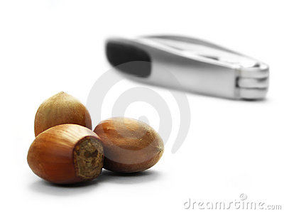 Hazel nuts and nut cracker