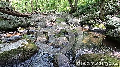 Hazel River, Shenandoah Virginia - Shot largo para baixo video estoque
