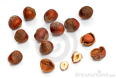 Hazelnut - 2