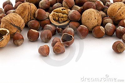 Hazelnut and walnut group