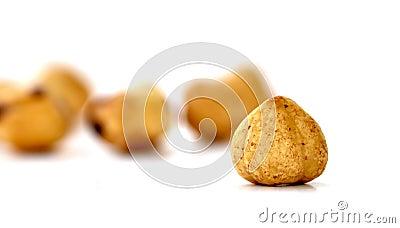 Hazelnuts 0027